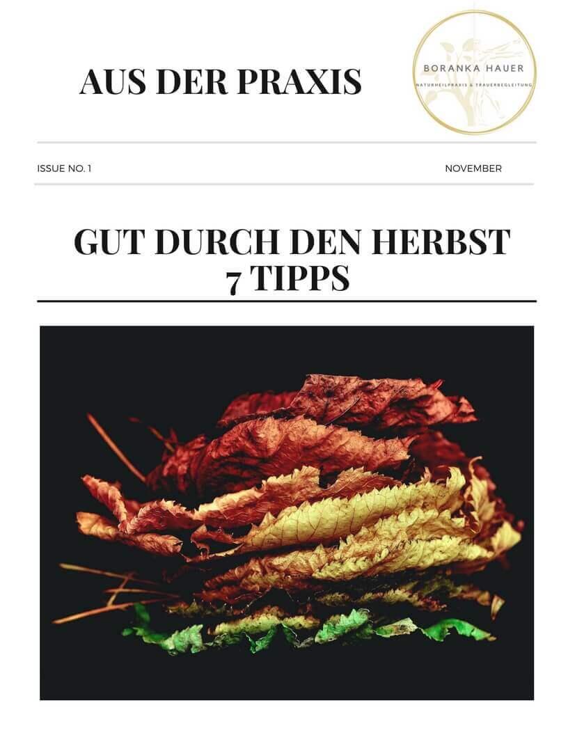 gut durch den Herbst - 7 Tipps